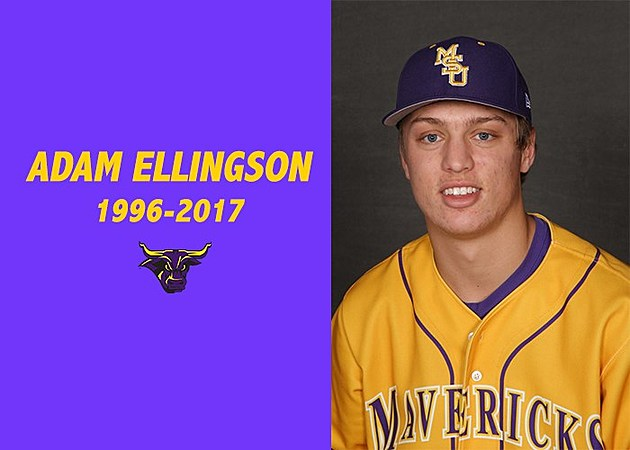 Adam Ellingson
