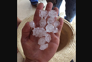 "1.5"" hail in 2 miles west of Fillmore, MN (Photo by Jake Stacken)"